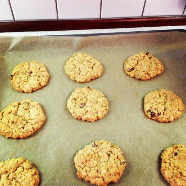Countlan oatmeal cookie