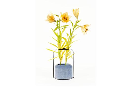Specimen Vase 5