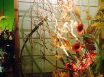 Babylon Floral Denver