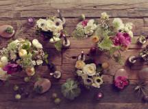 Quince Flowers Toronto
